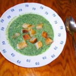 <b>Kopřivová polévka</b>